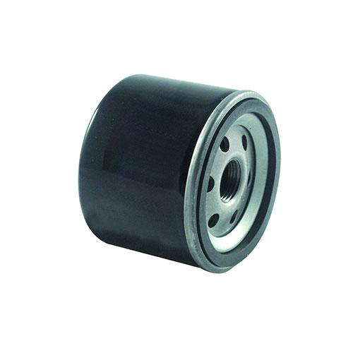 GA - Oil Filter - Rep B&S 492932