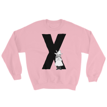 Load image into Gallery viewer, X - Moomin Alphabet Sweatshirt - feat. Snufkin