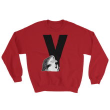 Load image into Gallery viewer, Y - Moomin Alphabet Sweatshirt - feat. the Groke