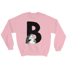 Load image into Gallery viewer, B - Moomin Alphabet Sweatshirt - feat. the Groke