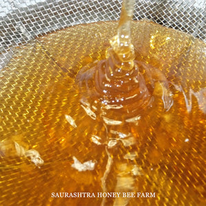 Natural Wild Honey - Organic & Raw (Forest Honey ) 530 gm