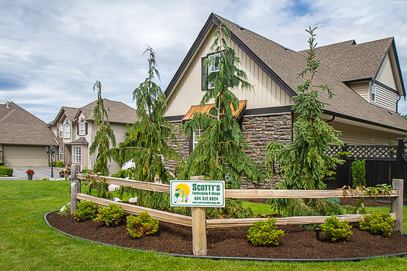 cloverdale bc front yard landscaping and design