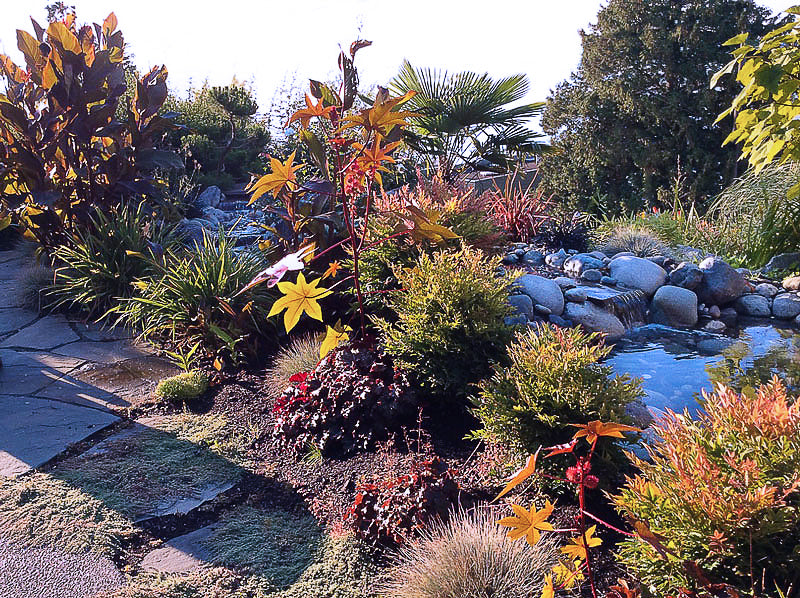 white rock water feature pond landscaping