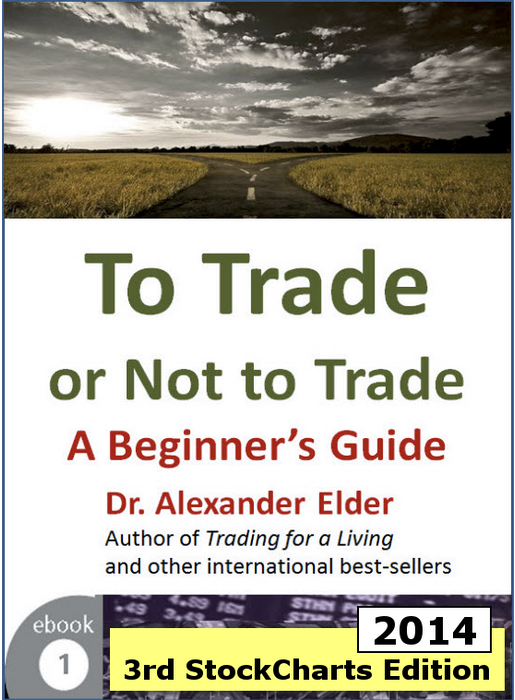 To Trade or Not to Trade: A Beginner's Guide 3rd Expanded Edition (eBook)