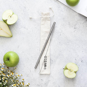 EVER ECO Steel Straw Gift Set - Silver