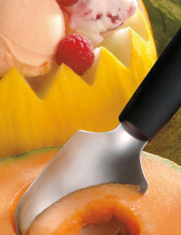 Triangle 7282060 Fruit Spoon Stainless Steel and Polypropylene Handle
