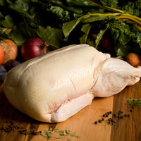Duck - Muscovy Whole 8lb