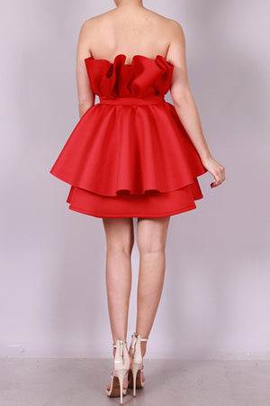Rosa Red Mini Dress
