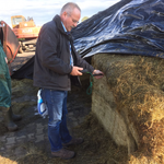 Silage Care