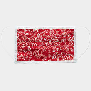 Paisley Print Cotton Non-Medical Reusable Fashion Mask