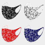 Load image into Gallery viewer, Multi Paisley Print Non- Medical Reusable Fashion Mask