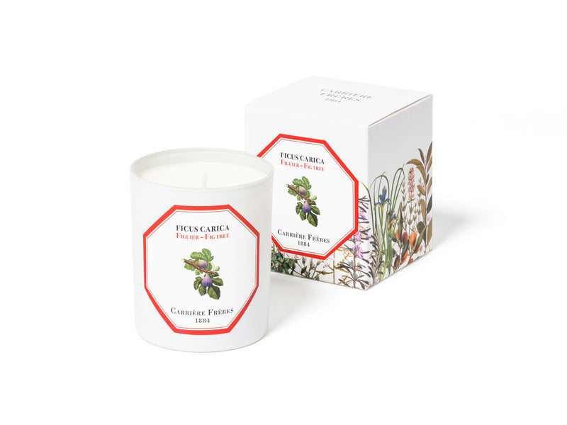 Fig Candle 185gm