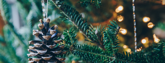 How To Make Your Holiday Season Sustainable | Less Waste and More Joy