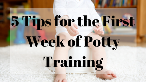 5 Tips for Potty Training