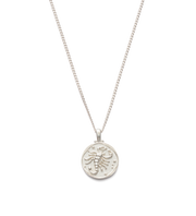 Scorpio  Zodiac Necklace Silver