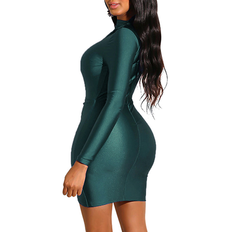 Eli Turtleneck Bodycon Dress