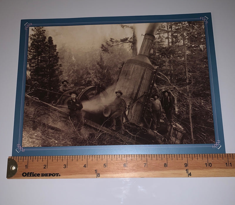 Pack of 8 Large, Historic Logging Photos