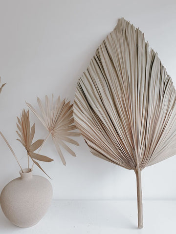 Dried palm spears and dried palm suns in a vase. Minimalist home decor inspiration