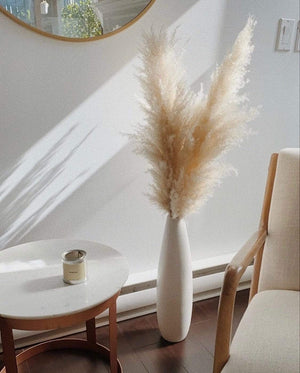 Load image into Gallery viewer, Large Arizona Pampas Grass - Golden August