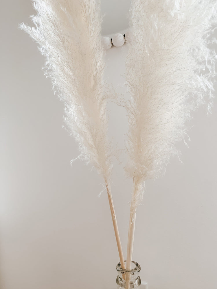 Load image into Gallery viewer, Sun Bleached Pampas Grass - Golden August
