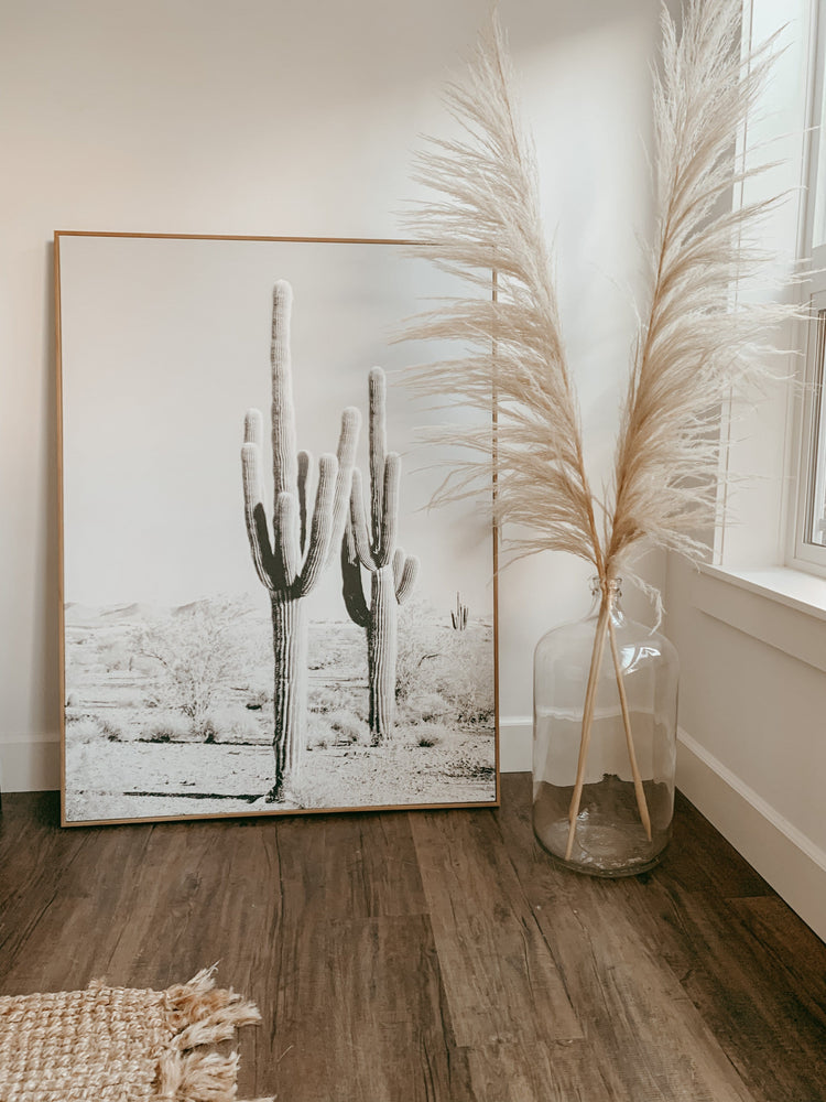 Load image into Gallery viewer, Golden Sand Pampas Grass