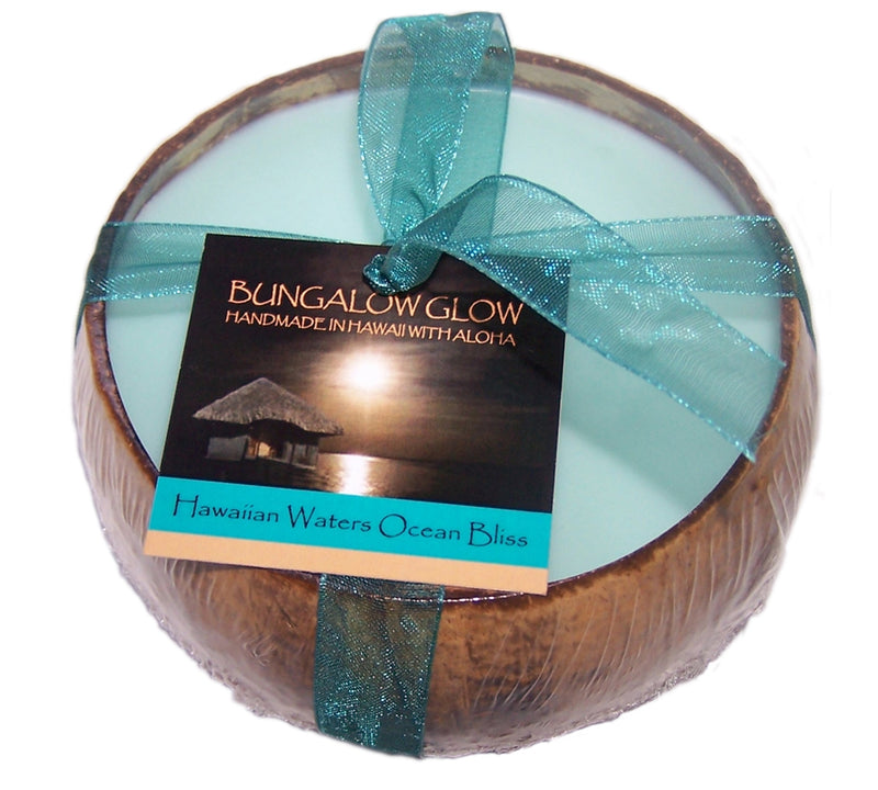 Hawaiian Waters Ocean Bliss Coconut Shell Soy Candle,12oz