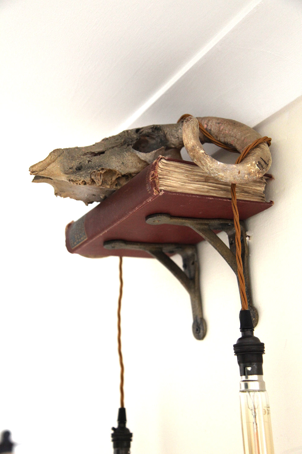 Book of Ram Wall Light