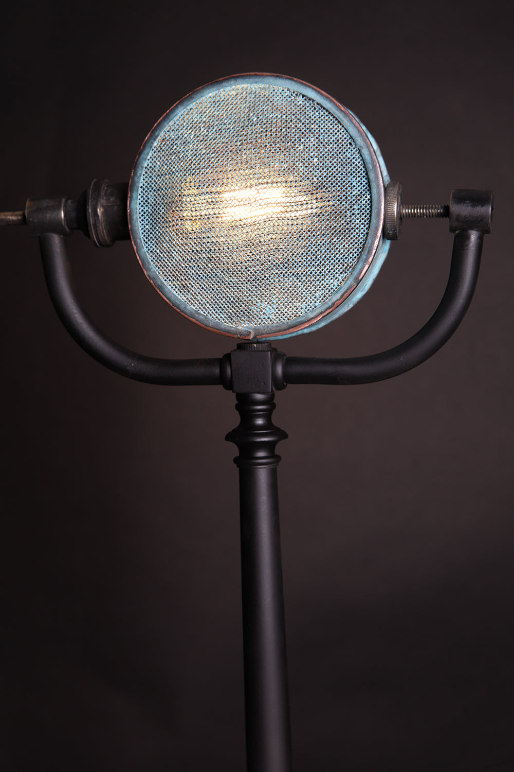 The Mic Light