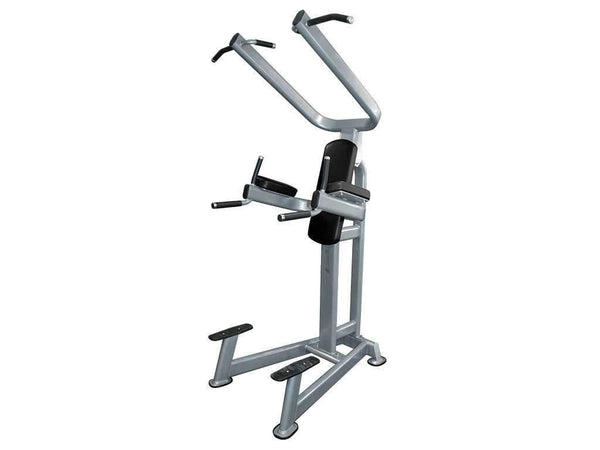 LIBERTY FITNESS PATRIOT SERIES COMMERCIAL POWER TOWER - Garner Fitness Supplies