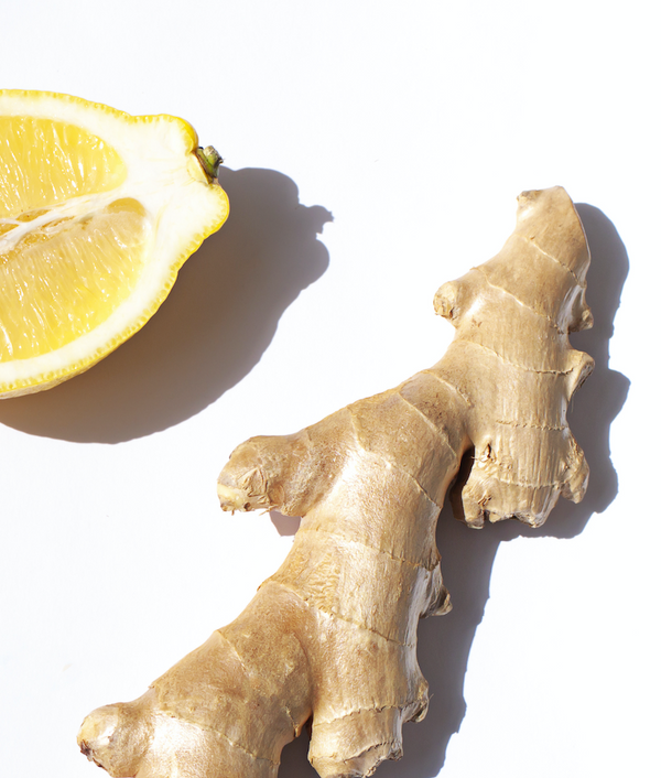 Morning Wellness Body Wash For Moms To Be - Citrus Ginger