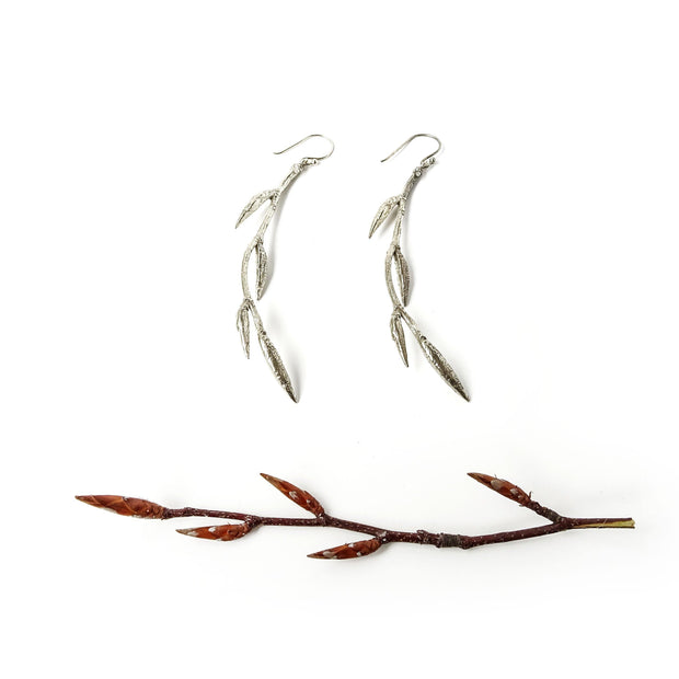 Earrings Beech tree-(fagus) with buds-global warning - STUDY AND KNOWLEDGE Silver