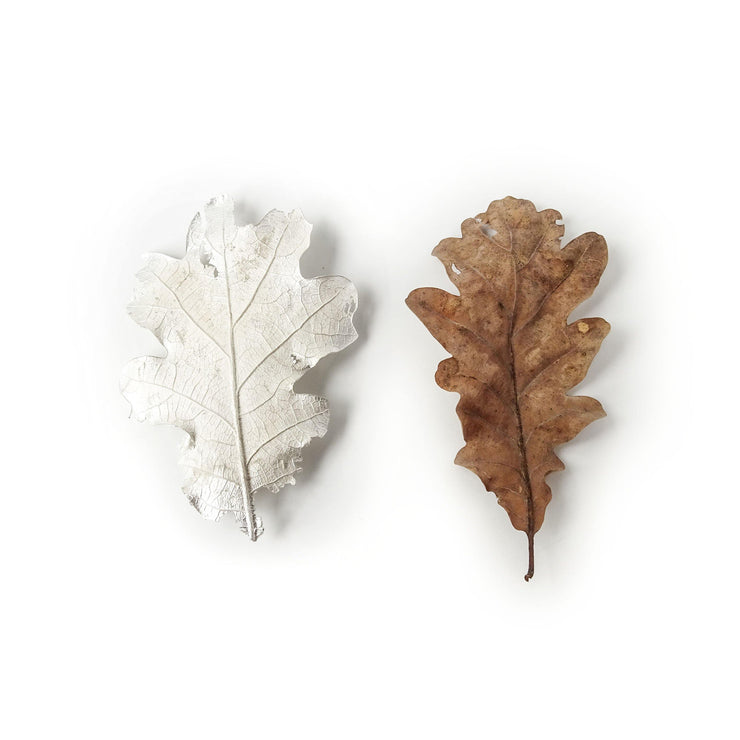 Unique item made to order: Manifesting goals - Oak/Quercus  Decomposing autumn leaf pin