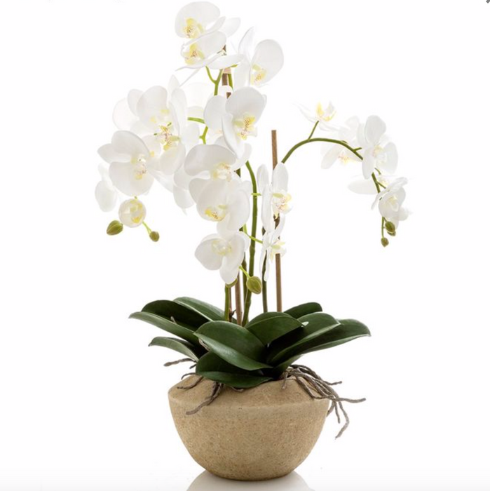 Faux Orchid in Stone Pot - 65cm