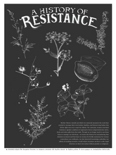 Load image into Gallery viewer, History of Resistance | Poster