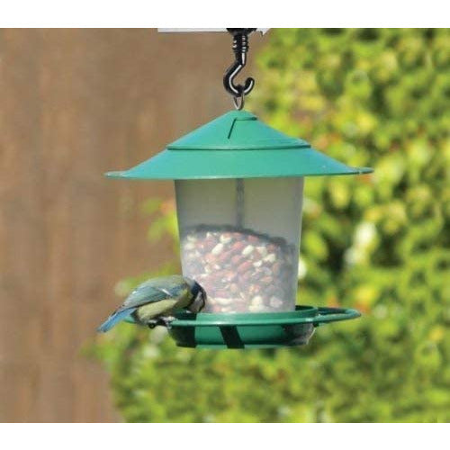 Hanging Lantern Bird Seed & Nut Feeder Green