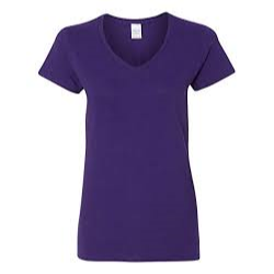 Gildan Women's V-Neck Purple T-Shirt