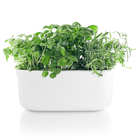 Eva Solo Self-watering Herb Organiser