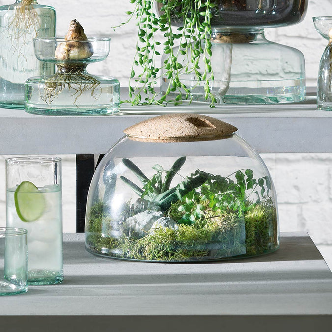 LSA Canopy Recycled Closed Garden Terrarium