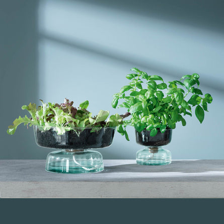 LSA Canopy Recycled Self Watering Planter