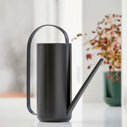 Zone Denmark Herb & Sprout Watering Can, Black