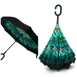 Peacock umbrellas