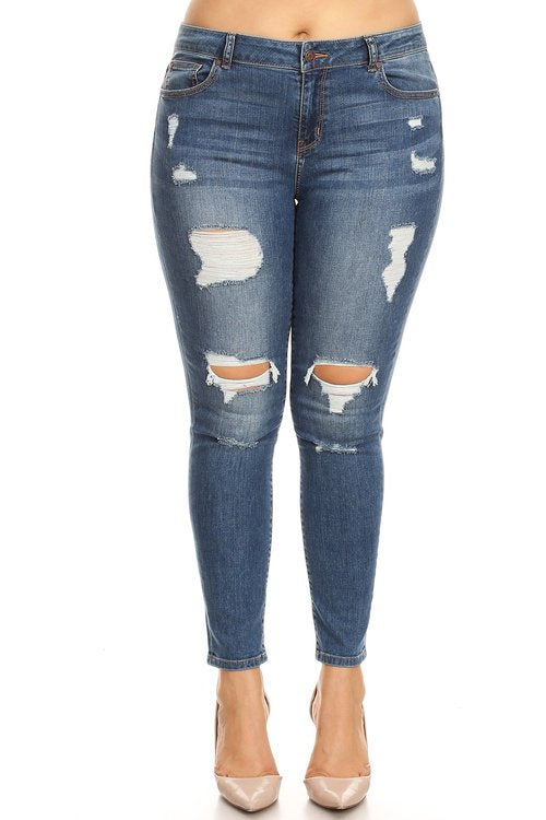 Memphis High Rise Distressed Curvy Skinny Jean