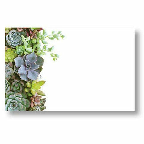 Succulents Blue Card