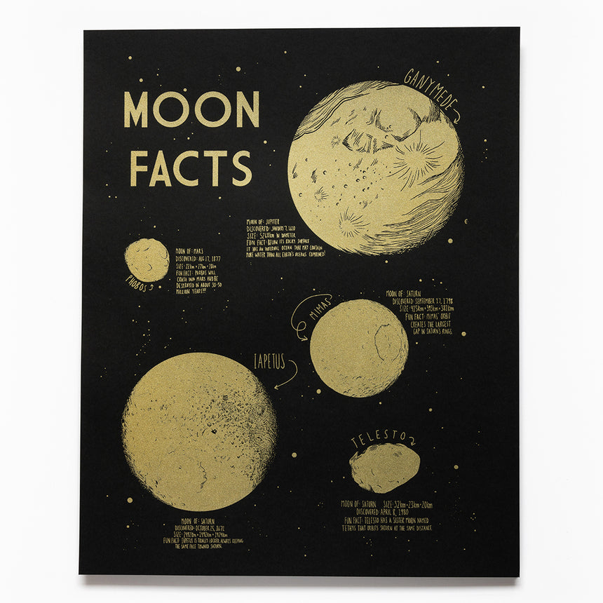 Moon Facts Screen Printed Poster