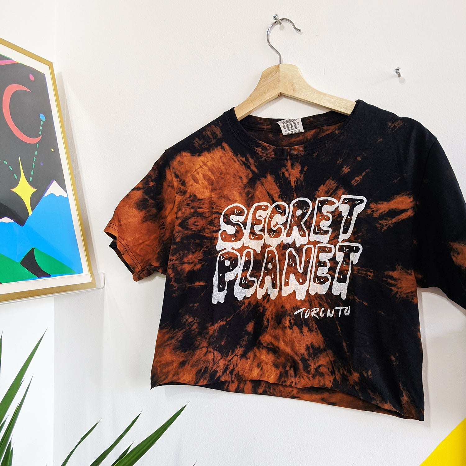 Secret Planet Tie Dye Cropped Tee