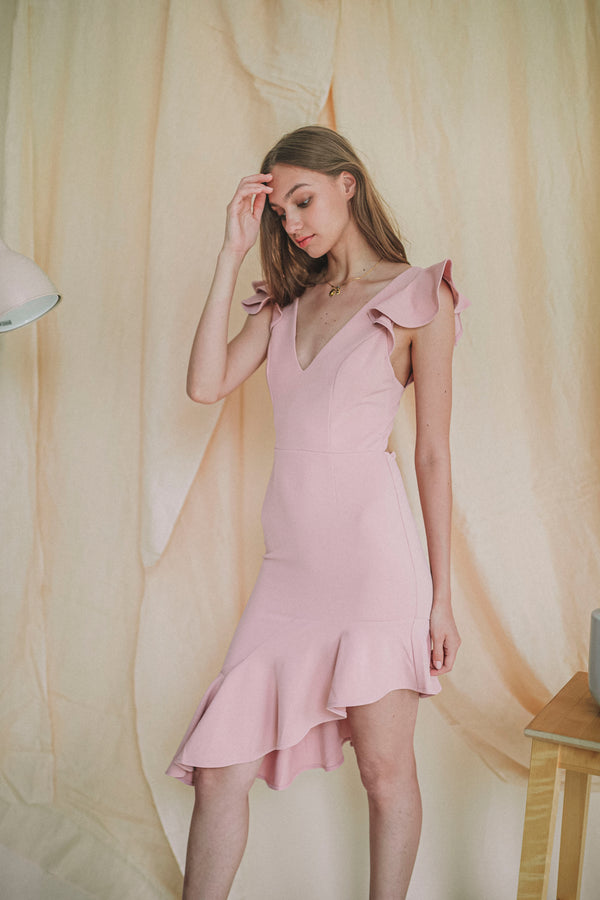 Raise The Bar Dress in Blush
