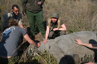 LA Larkin S Africa baby rhino tag and vaccinate