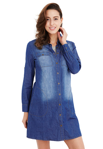 Maternity & Nursing Denim Shirt Dress