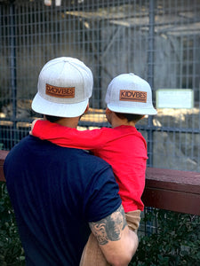 DadVibes Classic - Snapback (Heather Grey)