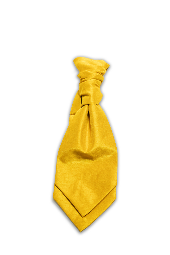 Wee Gold Hire Cravat